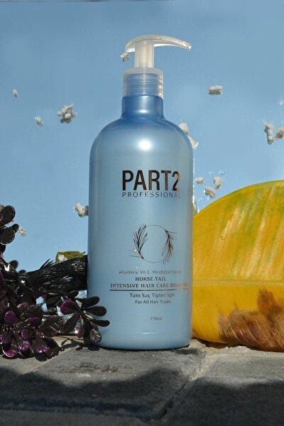 At Kuyruğu Şampuanı 750 ml