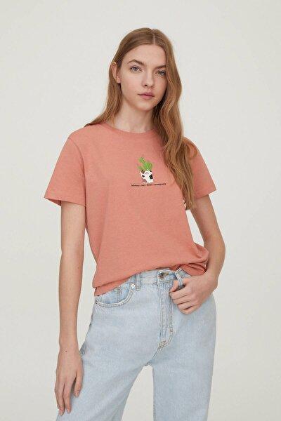 Kadın Kavruk Kedi Görselli T-Shirt 09247369