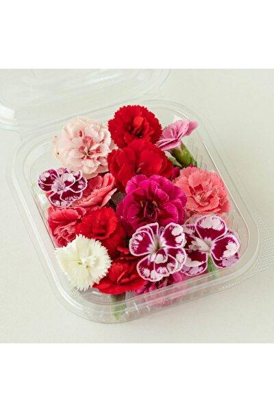 Yenilebilir Çiçek Karanfil (20 Adet Çiçek)
