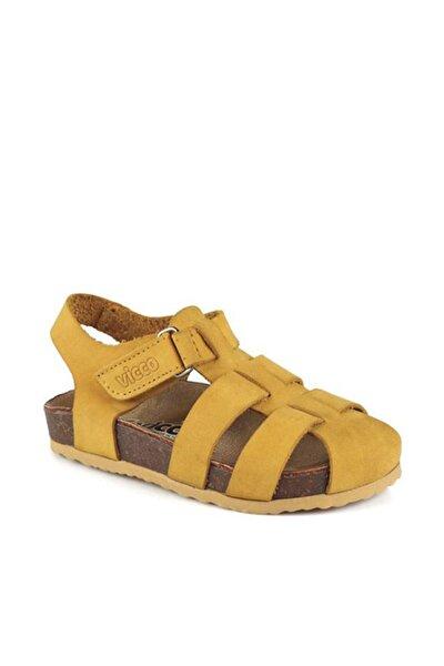 Arena Unisex Genç Sarı Sandalet