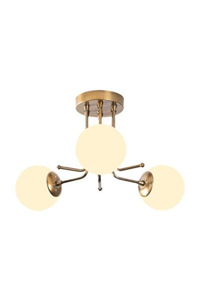 Daisy Modern Beyaz Globe Kapalı Camlı 3lü Avize