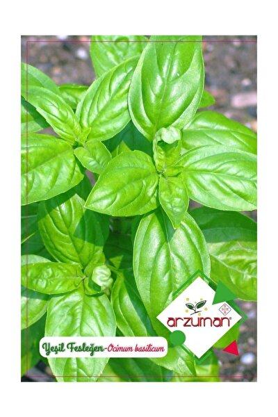 Arzuman Yeşil Fesleğen Tohumu 100 Adet