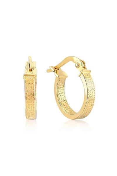Kadın Altın 14 Ayar Halka 1.7 cm Çap Küpe Gln300003