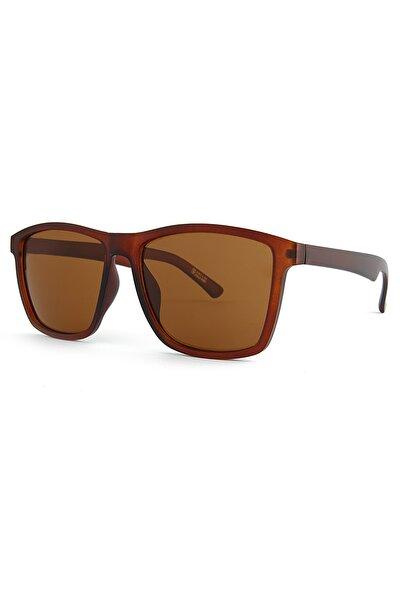 Basic Kahverengi Erkek Güneş Gözlüğü Apss031401