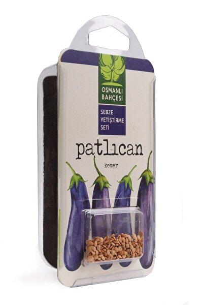 Patlıcan Tohumu + Organik Solucan Gübresi Paketi