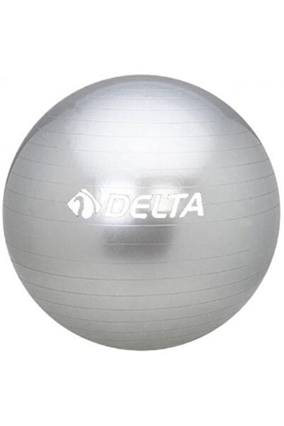 55 Cm Dura-strong Deluxe Silver Pilates Topu