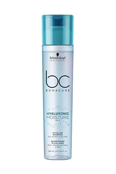 Kuru Saçlar Için Nemlendirici Şampuan Hyaluronic 250 ml 4045787429152