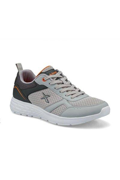 Apex Erkek Koşu Ayakkabısı 100501902