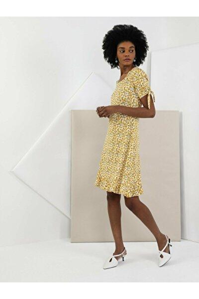 Kadın Elbise CL1048341