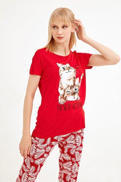 Kadın Kırmızı Kedi Baskılı Tshirt