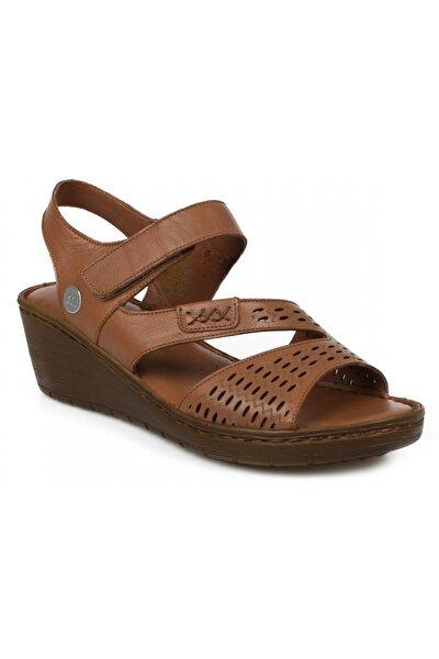 Kadın Günlük Taba Sandalet D21ys-1295