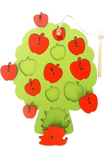 Ahşap Mıknatıslı Ağaçtan Elma Oltalı Tutma Oyunu Çocuk Oyuncak Puzzle Yapboz Bultak Kutu