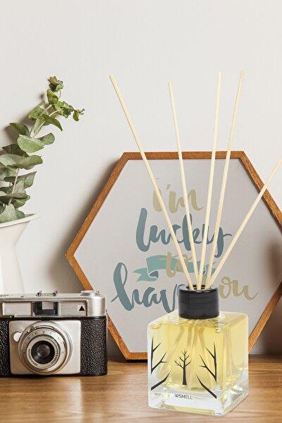 Angel Parfüm Aromalı Bambu Çubuklu Oda Kokusu 100 ml