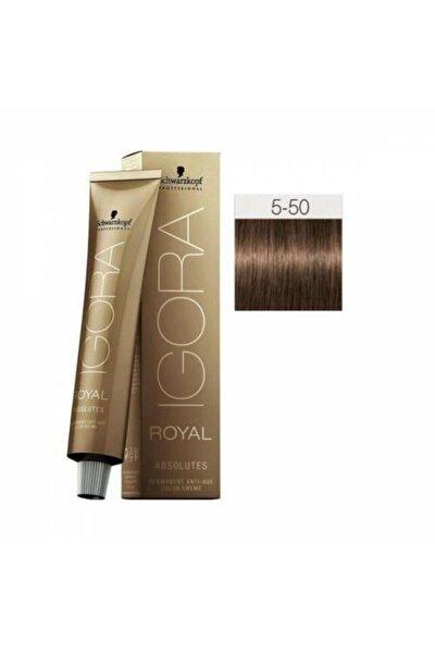 Açık Kahverengi Doğal Çikolata Igora Royal Absolutes Saç Boyası 5-60 60 ml 4045787282290