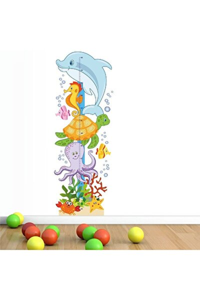 Deniz Dostlarım Boy Ölçer Sticker
