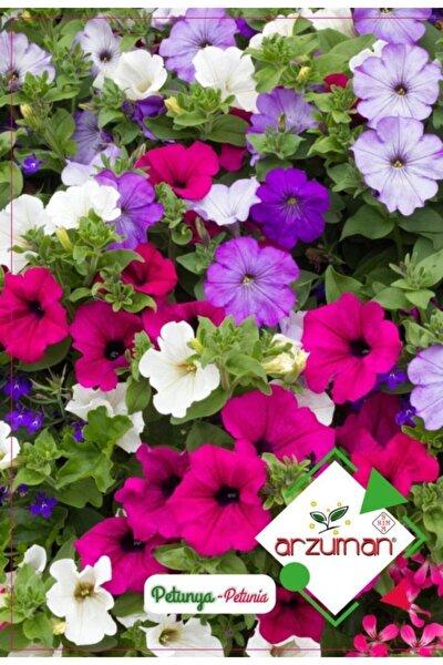 Arzuman Petunya Çiçeği Tohumu 100 Tohum
