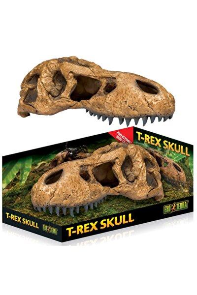 Trex Kafatası Şekilli Sürüngen Yuvası