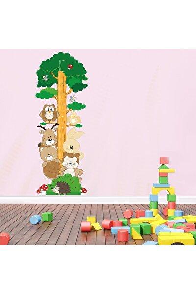 Orman Arkadaşları Boy Ölçer Sticker
