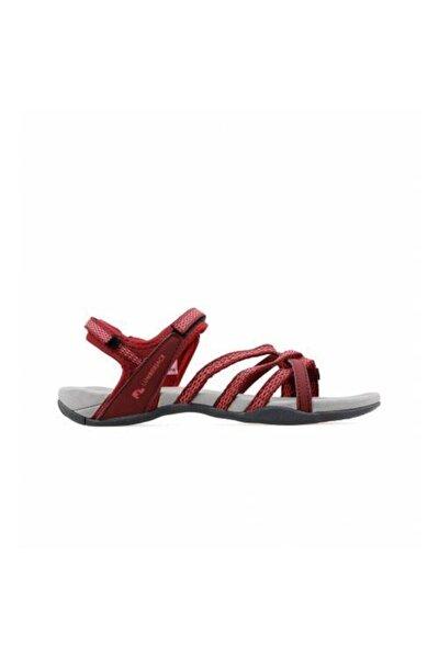Kadın Bordo Yazlık Sandalet 100241188-100241184