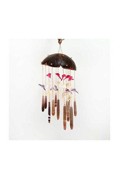Doğal Deniz Kabuğu ile Tasarlanmış Coco Renkli Kabuklu Rüzgar Çan