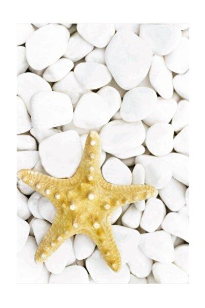 Dijital Yıldız  40x60 Banyo Paspası 0035 01