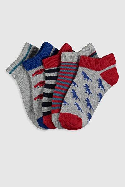 Erkek Çocuk Karışık Renk İpl K00 Çorap