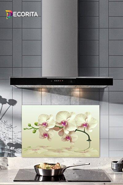 Krem Orkide Desenli | Cam Ocak Arkası Koruyucu | 40cm x 60cm