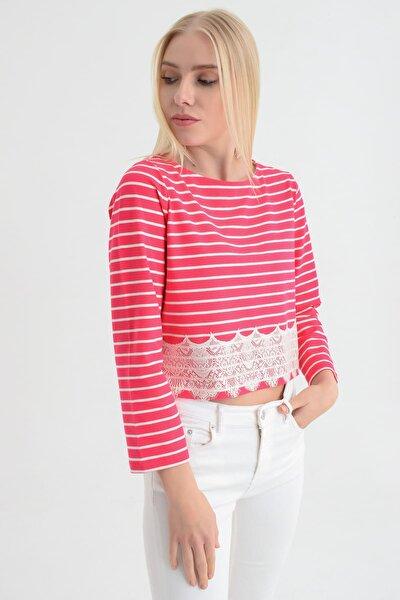 Kadın Pembe Beyaz Çizgili Beli Dantel Detaylı Uzun Kollu Bluz HN1709