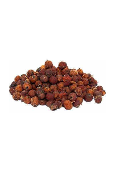 Alıç Meyvesi (Hawthorn fructum) Kuru 500g