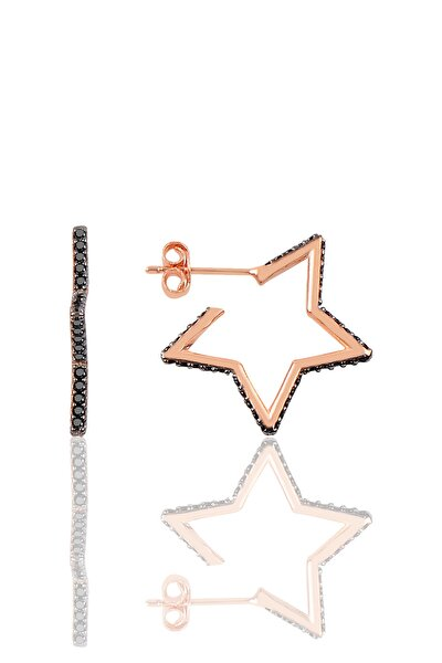 Gümüş Star Küpe SGTL9827