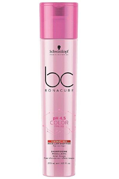 Color Freeze Kızıl Saç Bakım Şampuanı 250 ml 4045787430271