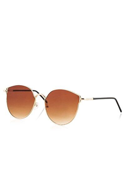 Kadın Güneş Gözlüğü PL19M41R002