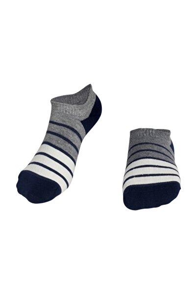 Mavi Krem Çizgili Erkek Patik Çorap
