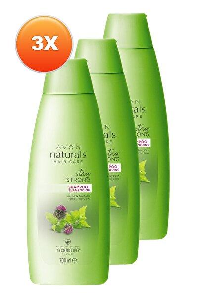 Naturals Isırgan ve Burdock Otu Özlü Şampuan 700ml - 3'lü Paket