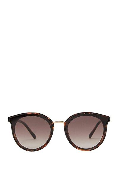 Kadın Kahverengi Plastik Güneş Gözlüğü 00678003