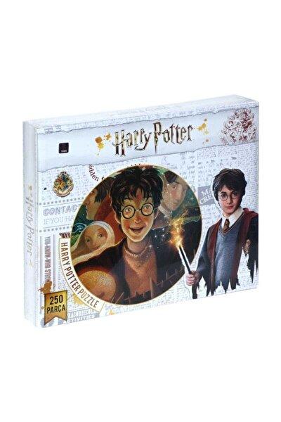 Harry Potter 250 Parça Puzzle