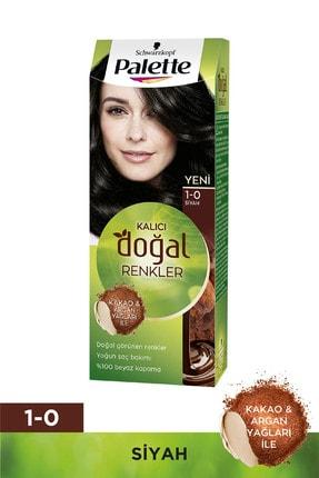 Palette Saç Boyası Kalıcı Doğal Renkler 1-0 Siyah