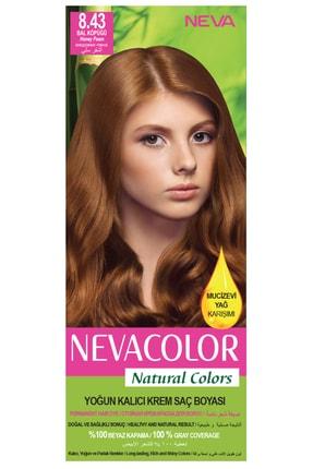 Neva Color Natural Colors 8.43 Bal Köpüğü - Kalıcı Krem Saç Boyası Seti