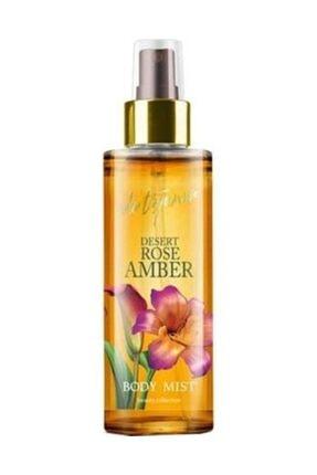 Eda Taşpınar Vücut Spreyi - Desert Rose Amber 200 ml + Orkid Günlük Ped Günlük Koruma Tekli Paket 20 Ped