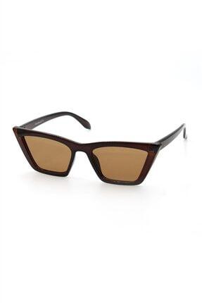 Silvio Monetti Kadın Kahverengi Cat Eye Uv400 Güneş Gözlüğü - 3sm8020br004