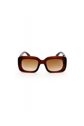 Miss Claire Kadın Kahverengi Güneş Gözlüğü Mc1852.c01