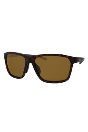 Gucci Unisex Smith Pinpoint Matte Tortoise N9p 59 Güneş Gözlüğü
