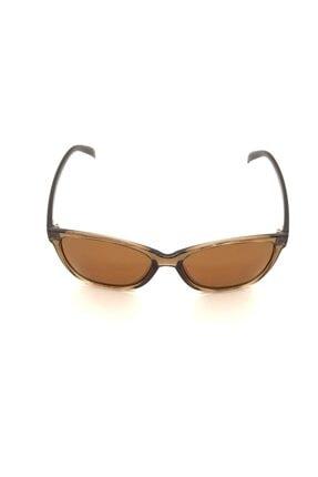 De Valentini Kadın Kahverengi Güneş Gözlüğü Dv Srt614c.5