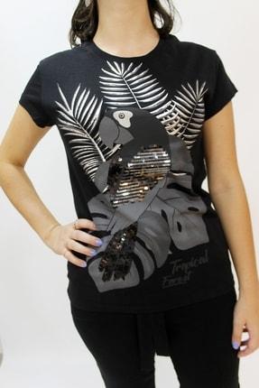 Cazador Caz 4314 Papağan Işleme Kadın T-shırt Siyah