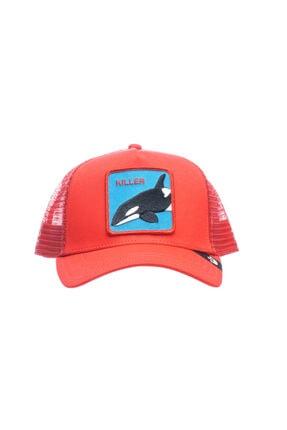 Goorin Bros Unisex Kırmızı Anımal Farm Kıller Whale Şapka 101-0626