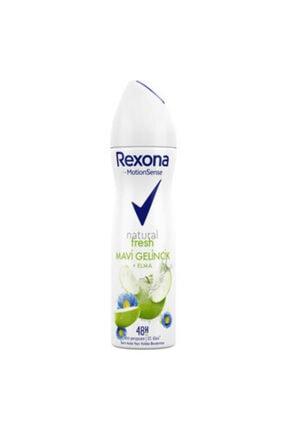 Rexona Stay Fresh 150ml