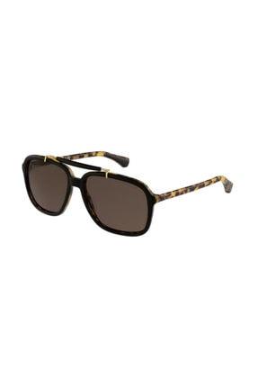 Armani Kadın Kahverengi Güneş Gözlüğü