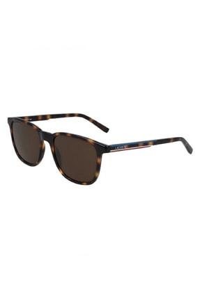 Lacoste Kadın Gözlük