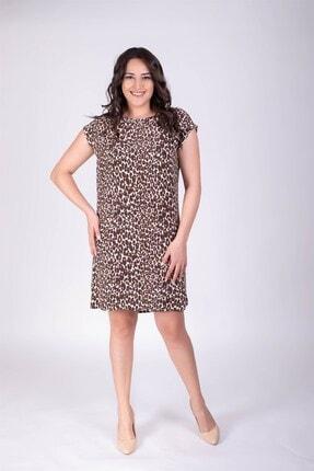 MYLİNE Kadın Kahverengi Leopar Düz Kesim Elbise 34101