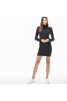 Lacoste Kadın Lacivert Boğazlı Mohair Elbise
